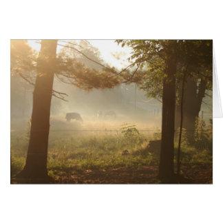 Pferde und Kühe im Nebel Karte