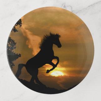 Pferde-und Sonnenaufgangtrinket-Behälter Dekoschale