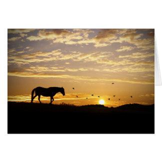 Pferde-und Vogel-Beileids-Karte Grußkarte