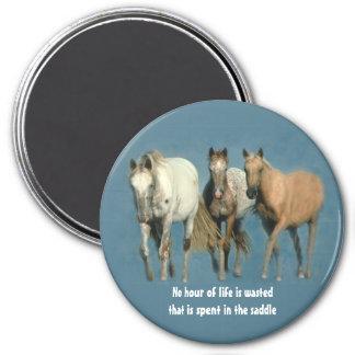 Pferde wild und wunderbarer Magnet Runder Magnet 7,6 Cm