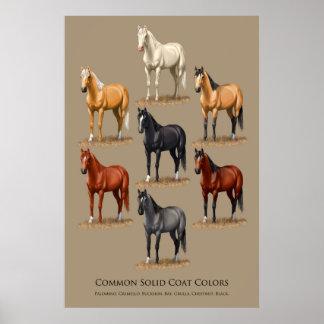 Pferdeallgemeines festes Mantel-Farbdiagramm Poster