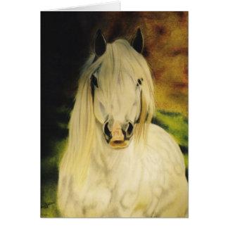 """Pferdeartige Karte """"die Shetlandinseln-Ponys"""""""