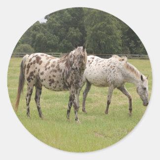 Pferdeaufkleber Runder Aufkleber