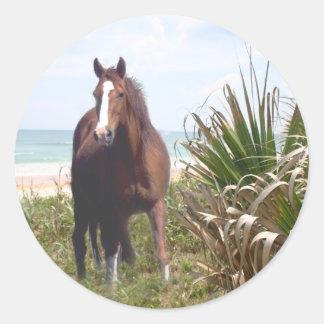 Pferdeaufkleber-Strand Runder Aufkleber