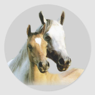Pferdefreund-Aufkleber