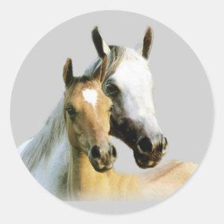 Pferdefreund-Aufkleber Runder Aufkleber