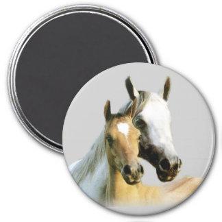 Pferdefreund-Magnet Runder Magnet 7,6 Cm