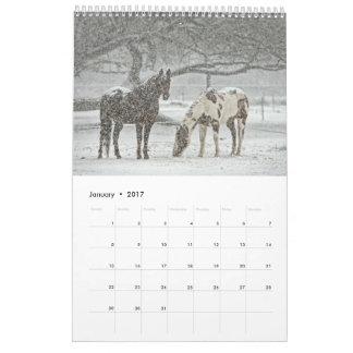 Pferdekalender 2017 abreißkalender