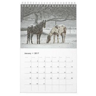 Pferdekalender 2017 kalender