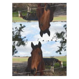 Pferdeland, Tischdecke