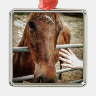 Pferdeleben Quadratisches Silberfarbenes Ornament