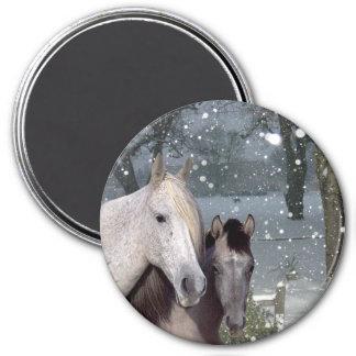 Pferdemagnet Runder Magnet 7,6 Cm
