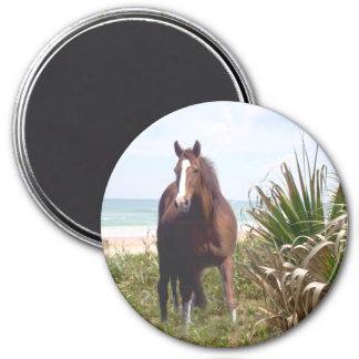 Pferdemagnet-Strand Runder Magnet 7,6 Cm