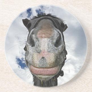 Pferdenase weiß! Lustiges lächelndes Pferd Untersetzer