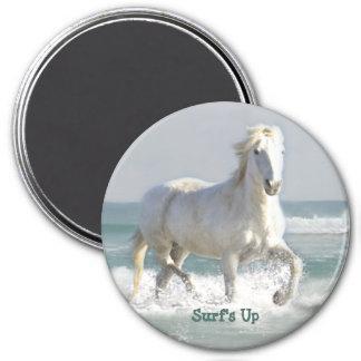 Pferdeozean-Schönheits-Magnet Runder Magnet 7,6 Cm