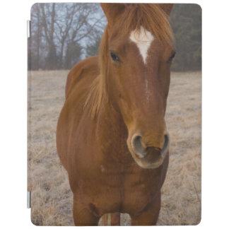 PferdePose iPad Hülle
