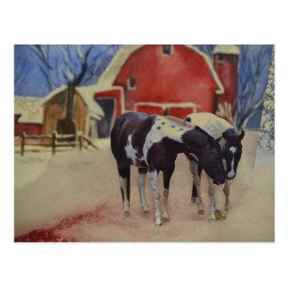 Pferdepostkarte der Stutenfohlen, des Fargo und Postkarte