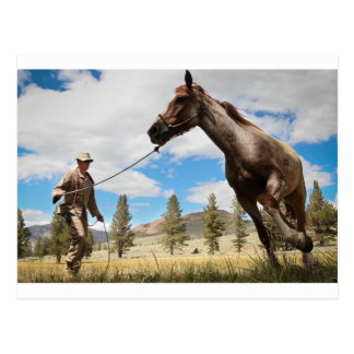 Pferderanch-Bauernhof-Schicksals-Natur-Hintergrund Postkarten