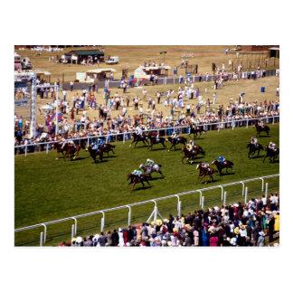 Pferderennen Postkarte