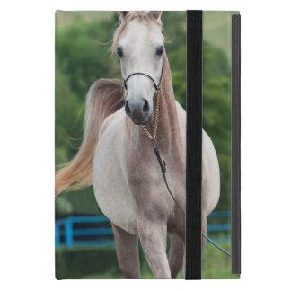 Pferdesammlung. arabisch schutzhülle fürs iPad mini