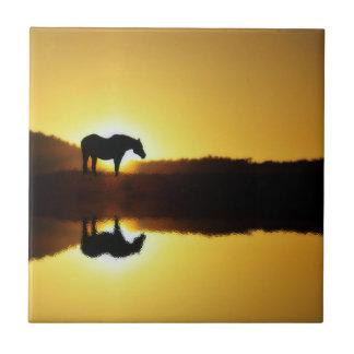 Pferdesonnenaufgang-Reflexion in der Keramikfliese