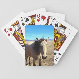 Pferdespielkarten Spielkarten