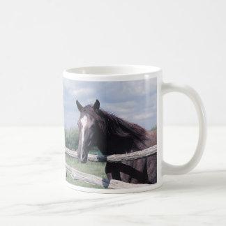 PferdeTasse Kaffeetasse