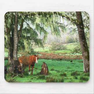 Pferdevieh-Ranch Mousepad