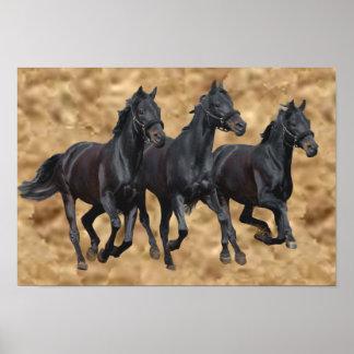 Pferdewilder Druck Poster