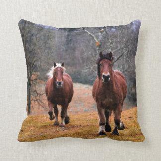 PferdeWurfs-Kissen Kissen