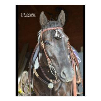 Pferdpostkarte der Namenspintostute Fargo Postkarte