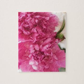 Pfingstrosen-Blumen-Nahaufnahme-Skizze Puzzle