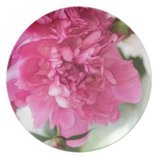 Pfingstrosen-Blumen-Nahaufnahme-Skizze Teller