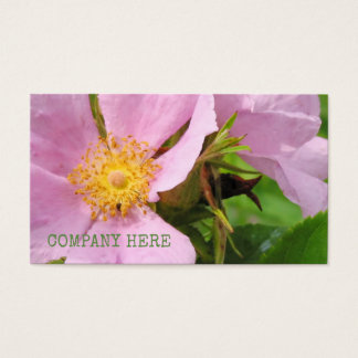 Pfingstrosen-rosa BlumenPflanzen-Blumen-Blüte Visitenkarte