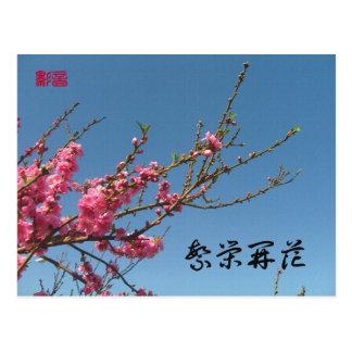 Pfirsich-Blüten-Baum Postkarte