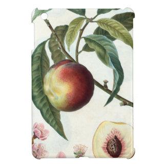 Pfirsich Hülle Für iPad Mini