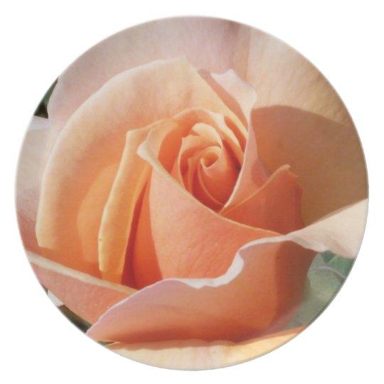 Pfirsich-Rose auf Platte Teller