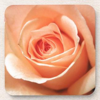Pfirsich-Rosen-Aprikosen-Rosen-Blumen-BlumenFoto Untersetzer