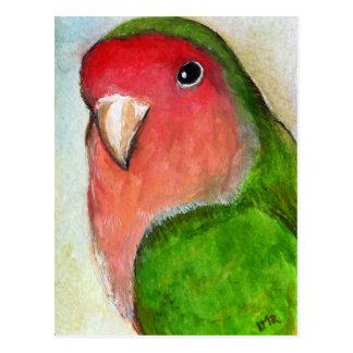 Pfirsich stellte Lovebird-Malerei-Postkarte Postkarte