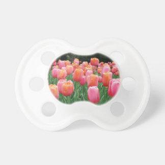Pfirsich und rosa Tulpen Schnuller
