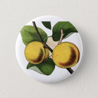 Pfirsichknopf Runder Button 5,1 Cm