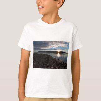 Pflaume Point-0001.jpg T-Shirt