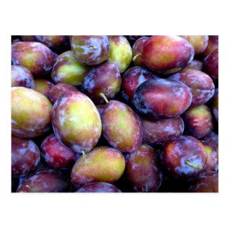 Pflaume trägt Fotopostkarte Früchte Postkarte