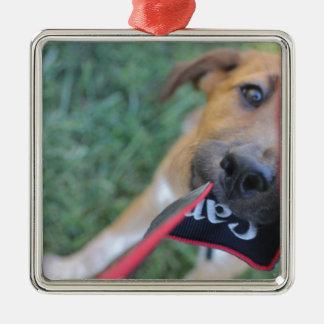 PflegehundeTauziehen Quadratisches Silberfarbenes Ornament