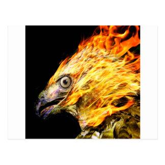Phoenix Postkarte