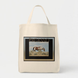 Picasso-Ikone des Sand-Waschbeckens, Colorado Tragetasche