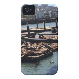 Pier 39 San Francisco Kalifornien iPhone 4 Cover
