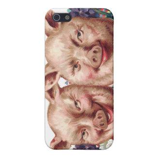 Piggy Telefon-Kasten iPhone 5 Hülle