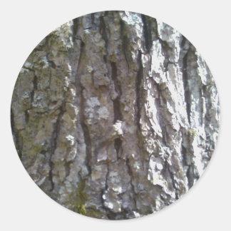 Pignut-Hickory-Baumrinde Runder Aufkleber