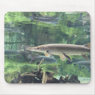 Pike-Fische Mousepad